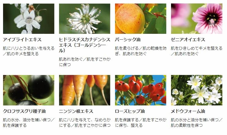 乾燥小じわ、目元の乾燥、ハリなどにいいと言われる植物エキスをたっぷり配合