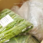 大地を守る会の旬のお野菜2000円相当が980円でお試しできます♪