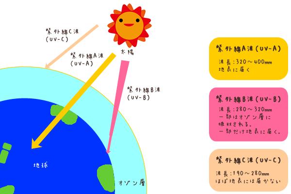 紫外線には3つの種類があります