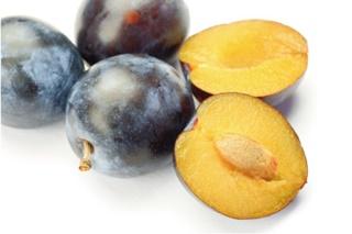プルーン種子オイル(フランス産)